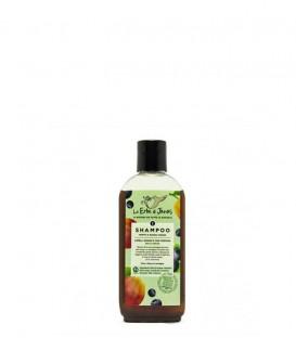 Shampoo Capelli Grassi e Forfora Mini Mirto e Susina Rossa