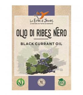 Olio di Ribes Nero